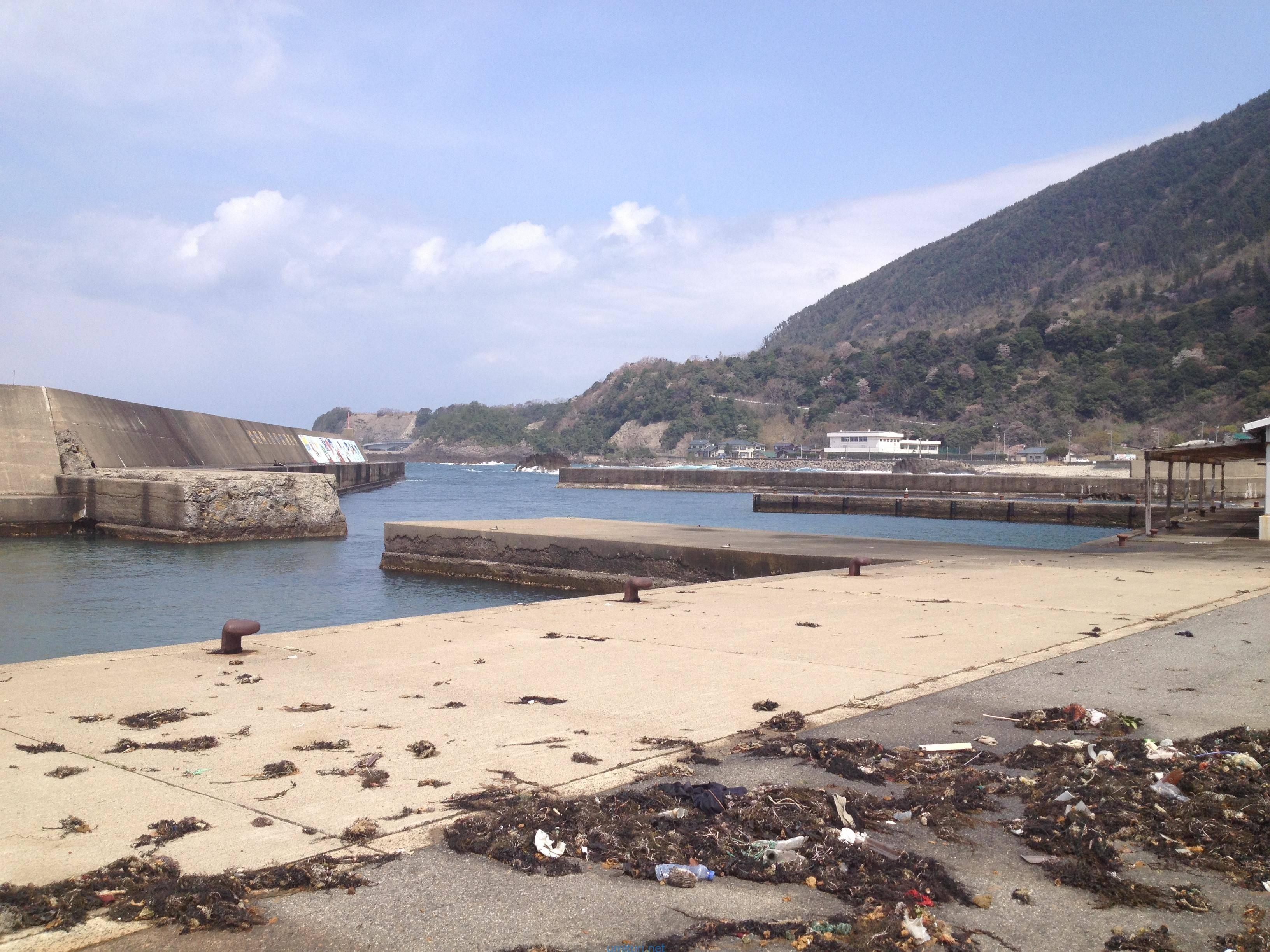 堤防のゴミ