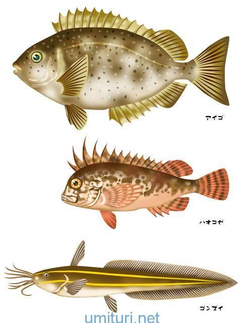 毒針を持つ魚たち