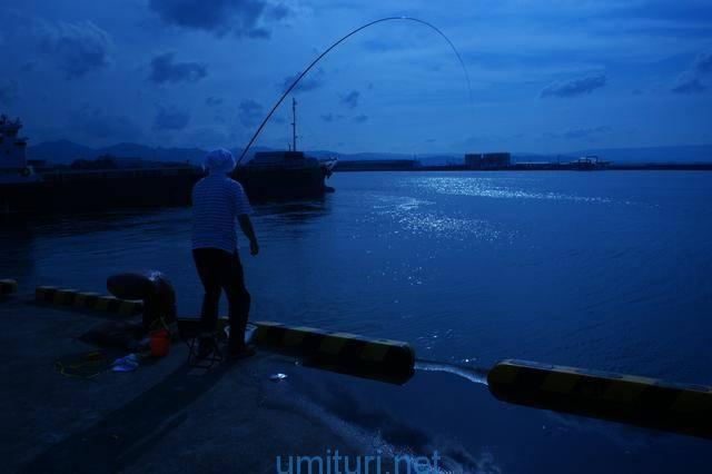 夜釣りのポイント