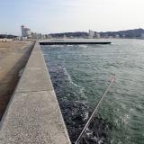 感覚を研ぎ澄ませた「脈釣り」で堤防際の魚を食わせる