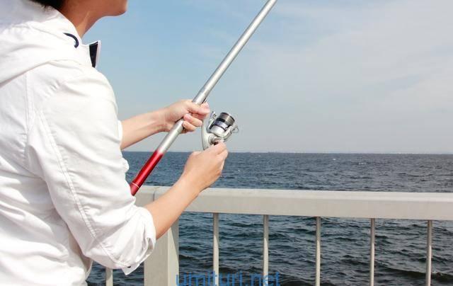 堤防の釣竿
