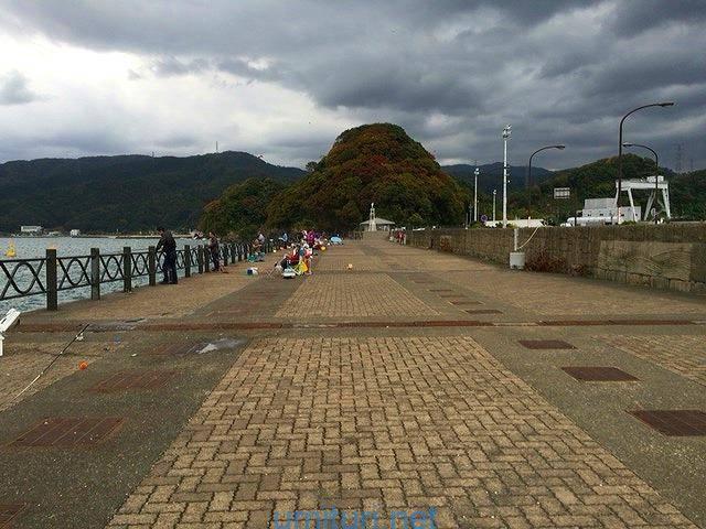敦賀新港海釣り公園で小型の「サヨリ」を釣って戯れる
