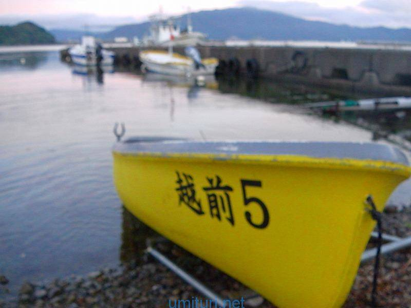 久々にレンタルボートで五目釣り!湾内近場でも意外と釣れる