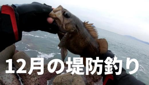 12月の堤防ではどんな魚が釣れる?目的を絞って狙う冬の魚