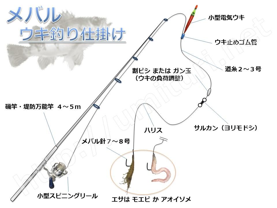 メバルの電気ウキ釣り仕掛け図解!広範囲を攻め大型を狙う