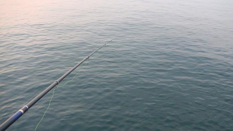 知多半島榎戸漁港でチヌフカセ釣り!多様なエサ取りとの戦いは続く