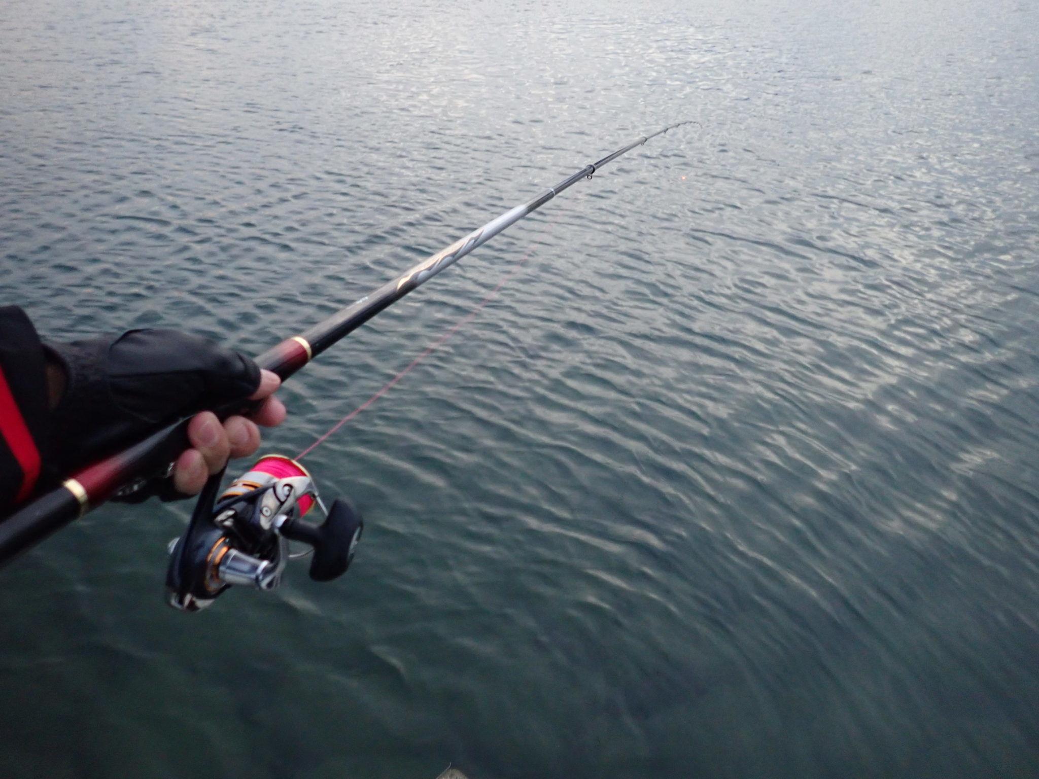 半夜釣りで狙う秋のチヌフカセ釣り!手頃サイズが荒食いする