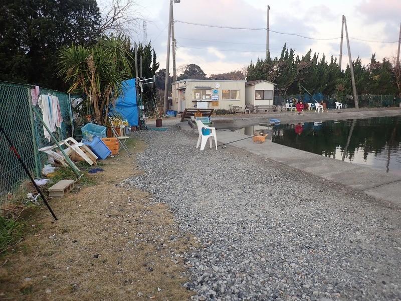 名古屋から近い海上釣り堀「美浜フィッシングパーク」の釣り方