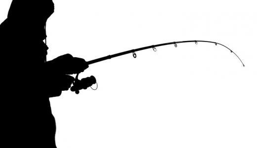釣りで収入を得て生計を立てる方法について手段や期待値を考察