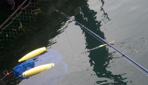 タナ・棚は釣り用語として最も難解な解釈であると思う