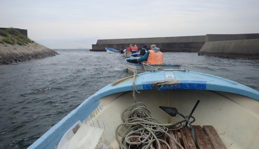 知多半島小佐ボートで初夏のマゴチ釣り!手軽に一級ポイントで釣りできる