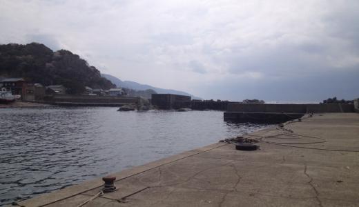 越前海岸釣り場「白浜漁港」は急に深くなる水深にマダイも回遊する