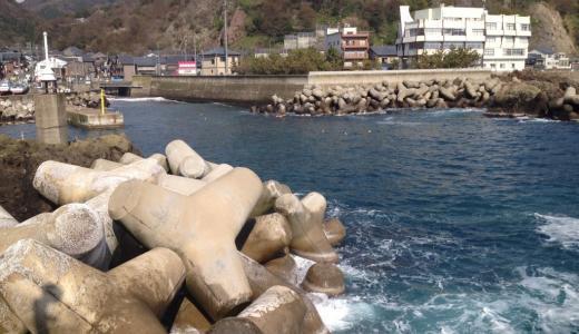 米ノ漁港(釣り場)根魚豊富でポイントも広いテトラ釣り場