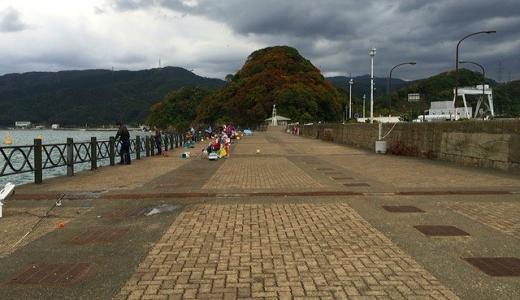 敦賀新港海釣り公園で釣れる四季の魚+動画と写真で見る釣り場解説