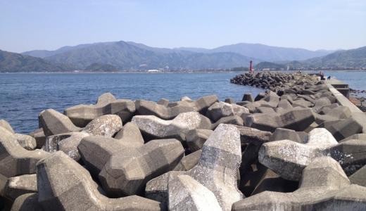 早瀬漁港はポイントが広く釣りやすい!福井県若狭の釣り場を解説