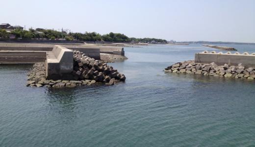 豊丘漁港で何を釣る?小さくて静かな穴場的フィールド