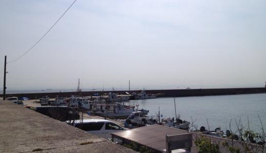 中州漁港は長い堤防テトラでチヌ・アオリイカの好釣果が見込める釣り場