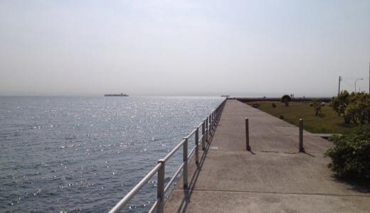 冨具崎漁港は沖目のかけあがりを効率よく攻めると釣果が伸びる