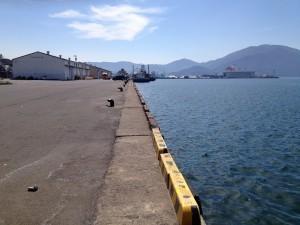 敦賀港岸壁は車横付けでサビキ釣りできる穴場的スポット