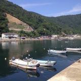 近くを漁船が通っても魚は逃げないのか?堤防釣りにおける船の往来の考察