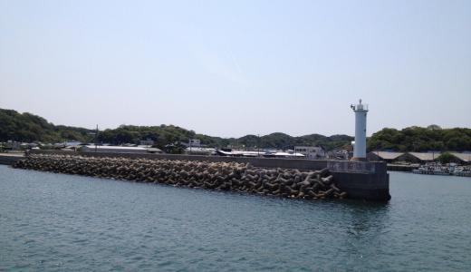大井漁港は釣り場豊富でメバル・シーバスが釣れるフィールド