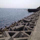 小佐漁港の堤防釣り場|穴場的フィールドでチヌ・アイナメの宝庫