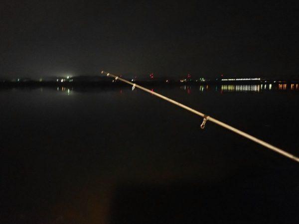 夜のブッコミ釣り