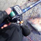 海上釣堀で脈釣りのススメ「カウンター付きリール」で全方位攻める効率の良さ