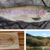 愛知管理釣り場「戸神の池」で海釣りタックルを応用した釣果
