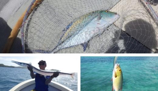 パラオの釣りはトップゲームで多彩な魚が釣れるGT以外にも面白い楽園だった