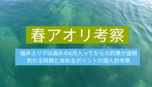 福井県の春アオリイカは6月からが本番!例年の傾向と釣れるポイントの個人的考察