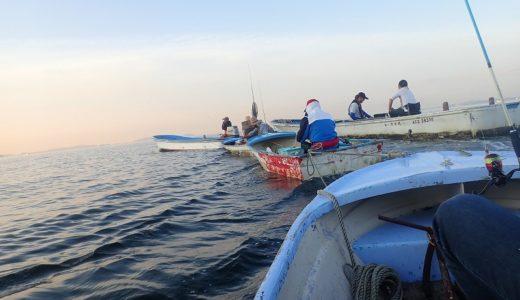 2019年の釣りを振り返る!今年のチャレンジと活動報告