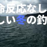 冬の海釣りで魚が何も釣れない!死の海のような状況だったらどうするべきか?