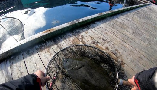12月の辨屋釣行は低活性で大苦戦も釣り続ければいいことある