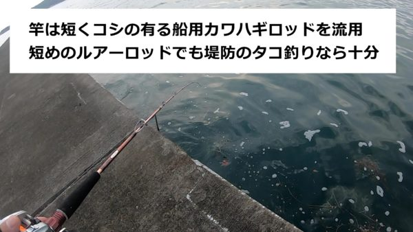 船釣り用の竿を堤防タコ釣りで流用