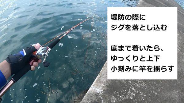 タコ釣りは上下に竿を動かすだけ