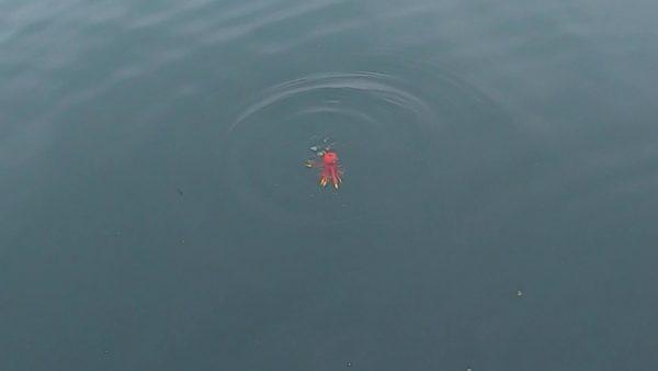 タコジグは海中で泳ぐカニのように見える疑似餌
